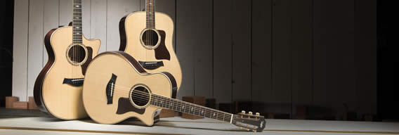 taylor guitars 800 series
